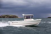 伟勒游艇:欧洲进口钓鱼艇Fisher-21