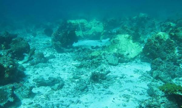 印尼政府要英搁浅邮轮赔偿珊瑚群损失