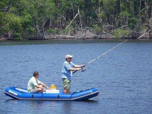 充气钓鱼船的价格一览