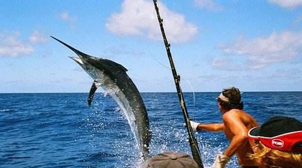 海钓,海钓常识之钓点选择及其相应钓法