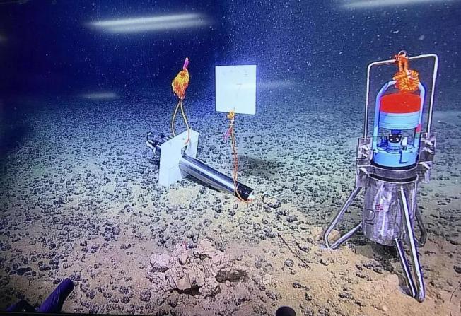 深海里是这样的 科考船首次直播深海奇景