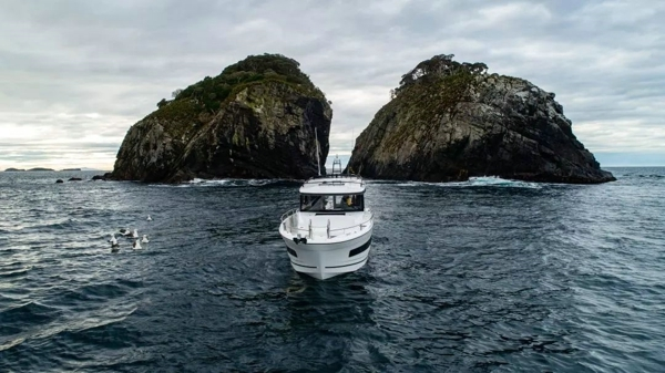 MERRY FISHER 895 MARLIN 新西兰独家美图首次发布