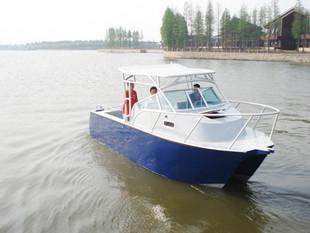 685 Catamaran Boat